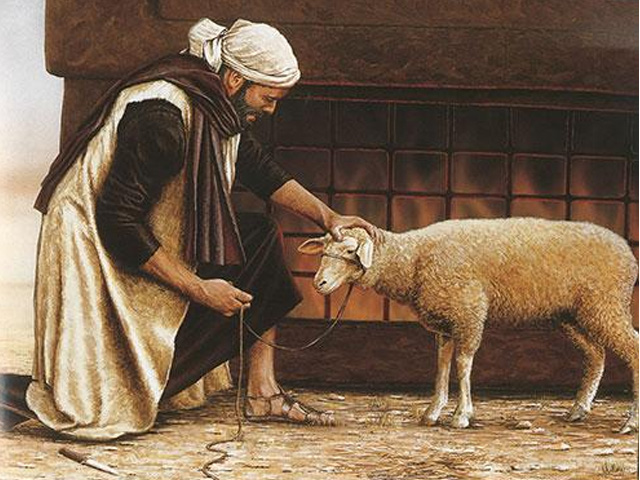 man sheep lamb korban pesach