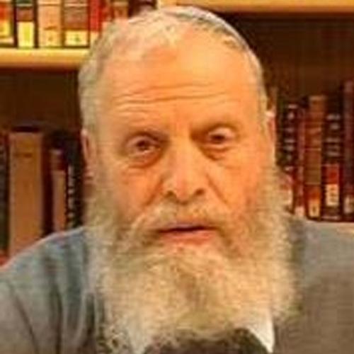Rabbi Dr. Yoel Bin-Nun
