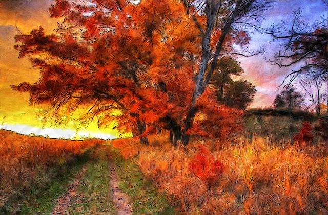 a very realistic oil painting featuring a beautifulb bright red tree in autumn. a grassy walkway sits to the left. on the left side of the tree (our left) we see a bright yellow sunset. on the right side, the sky is a purple-y blue and some branches are barren. the hay on the ground is golden and red- it's a majestic fall scene.